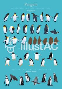 ペンギン一覧イラスト