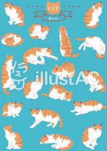 猫のイラストセット 茶トラ