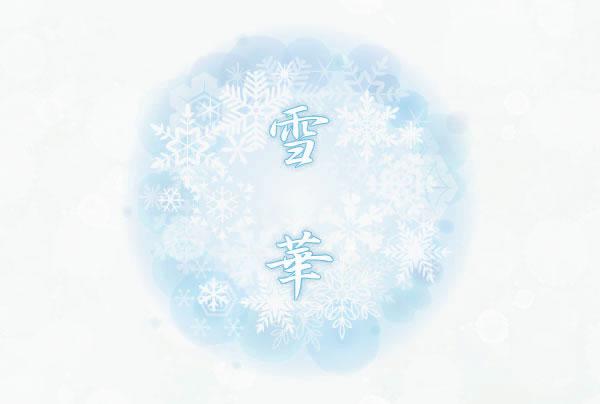 雪華トップimg